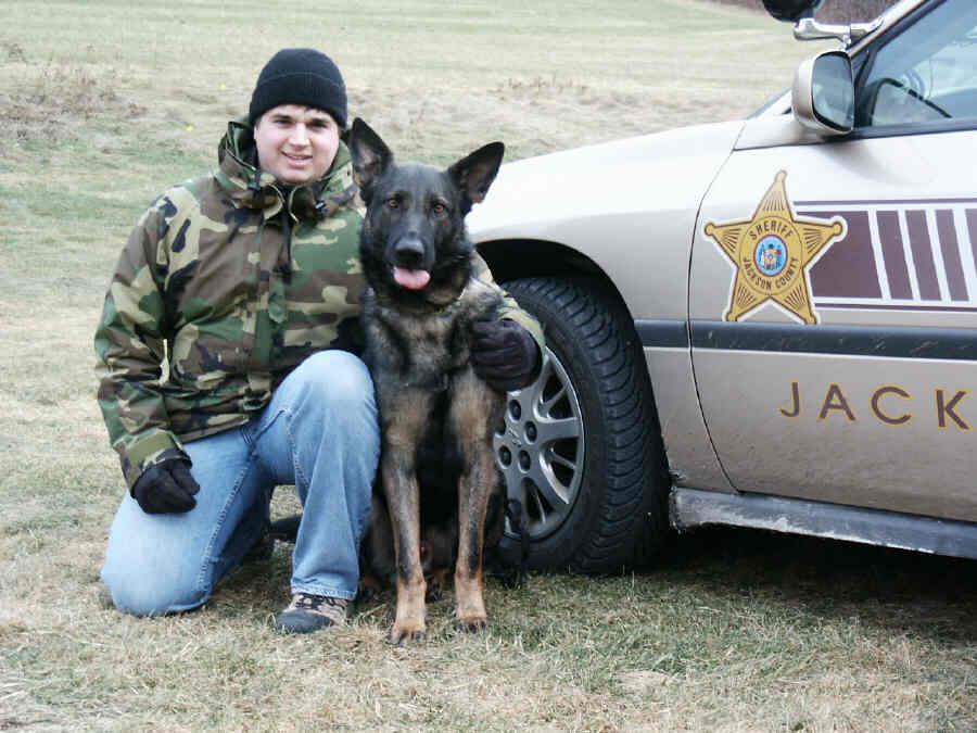 Dog Kennels In Iowa